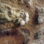 centrale assèchement des murs
