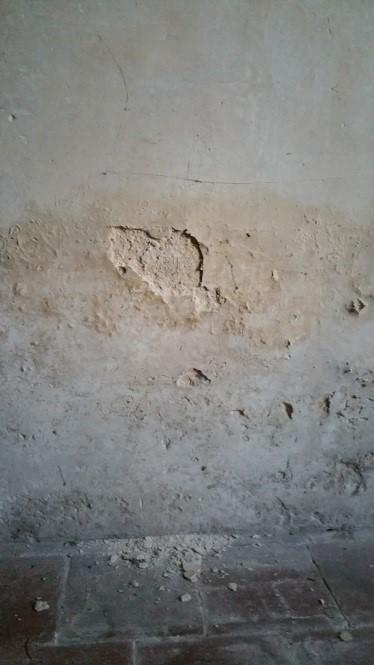 Comment Diagnostiquer Un Problème De Murs Humides Isosec