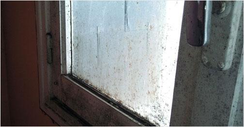 Conséquences de la condensation excessive sur votre santé